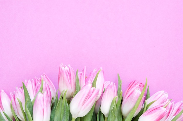 チューリップの花と花の背景。フラット横たわっていた、上面図。母の日、結婚式や幸せなイベントのためのチューリップと素敵なグリーティングカード