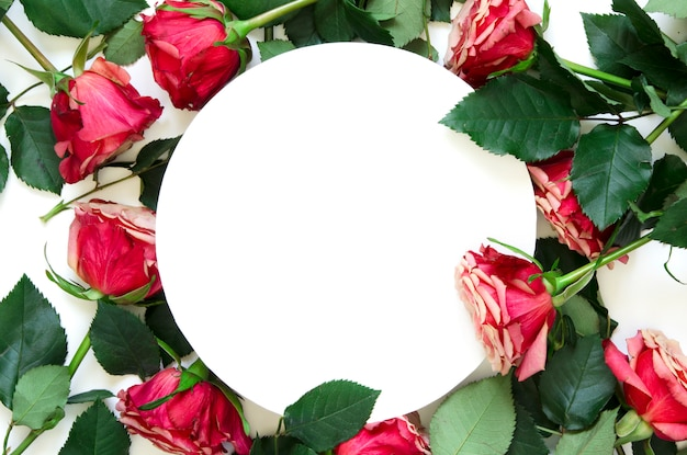 花の組成白地にバラの花で作られたフレーム。フラットレイアウト、上面図、コピースペース
