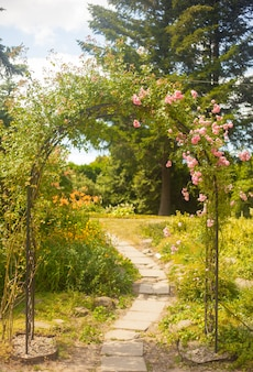 夏の庭のバラと装飾的なアーク