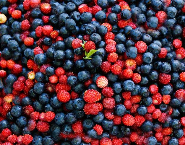 野生のイチゴとブルーベリー