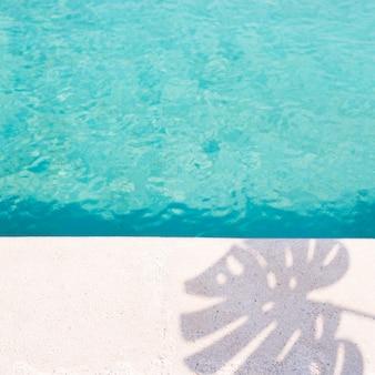 熱帯のシャドーとコピースペースを持つプール