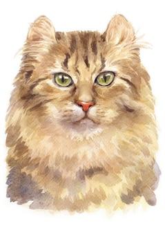 アメリカのカール猫の水彩画