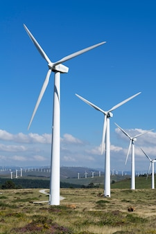 ガリシアの風力発電所の風力タービン