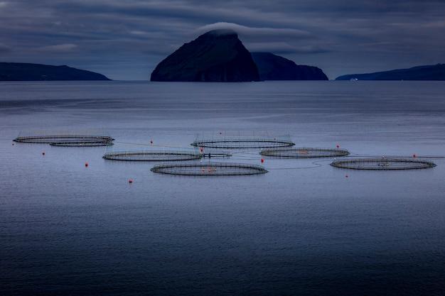 魚の養殖の詳細