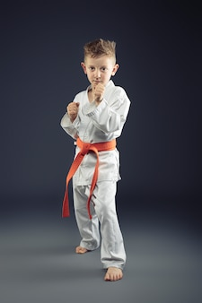 格闘技の練習着物を持つ子供の肖像画