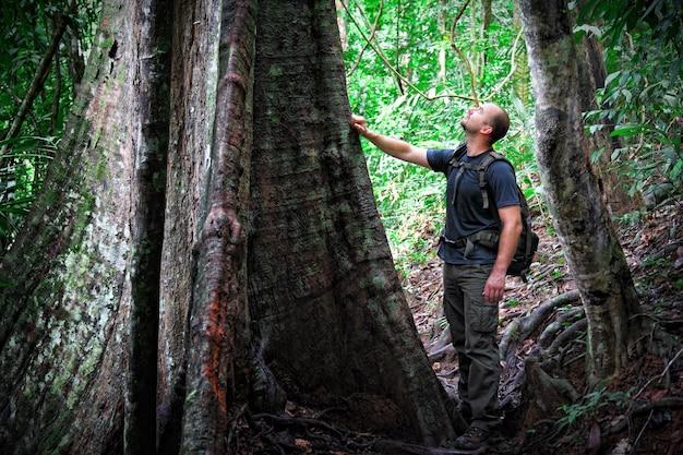 ボルネオジャングルの男は大きな木に見える