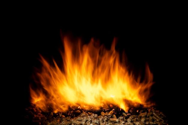 燃える木質ペレット、生きている炎