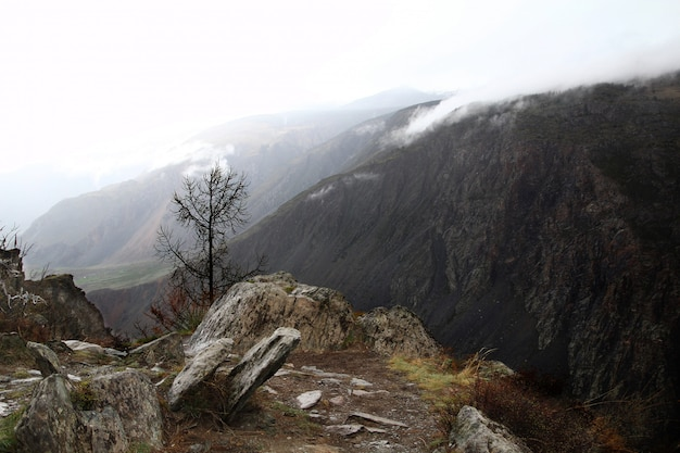 Туман в скалах