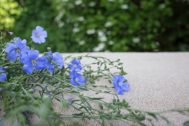 青い花の背景