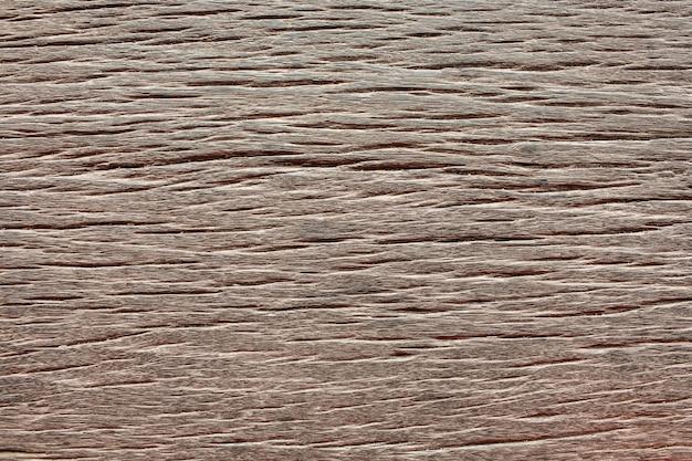 Поверхностные текстуры коры крупным планом в качестве фона