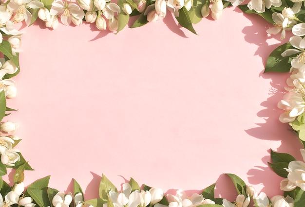 花の背景、ピンクの背景の白い春の花。テキストのためのスペース。上からの眺め。花のフレーム。