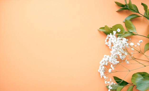 緑の葉とカスミソウの白い花を持つ美容化粧品。母の日婦人のコンセプト。フラット横たわっていた、トップビュー。