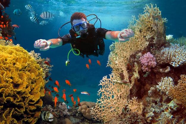 幸せな男は海のサンゴや魚の間でダイビング