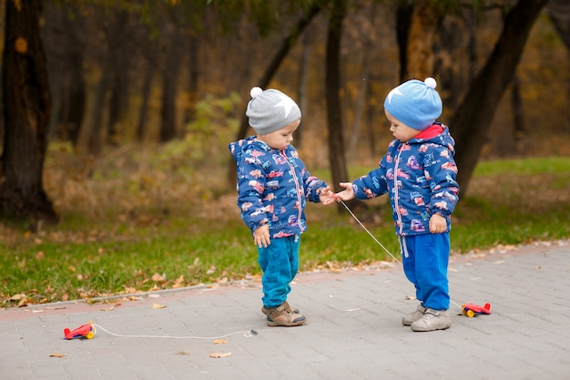双子は秋の公園でおもちゃの車で遊んでいます。