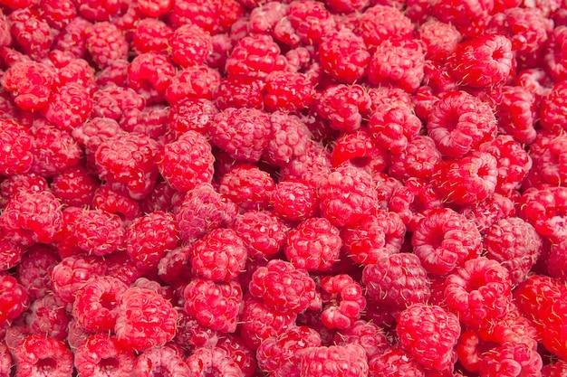ラズベリーのクローズアップ。多くの熟した果実をクローズアップ、フィールドの浅い深さ