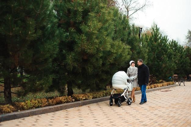 家族は乳母車で秋の公園を散歩します。ママ、パパ、赤ちゃん