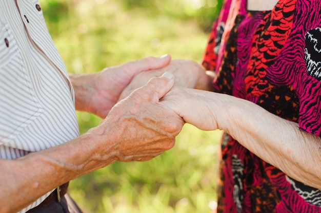 夏の公園で手を繋いでいる老夫婦。