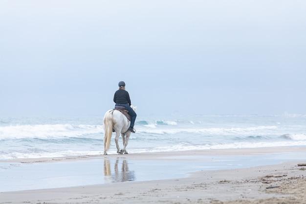 曇りの日にビーチで馬の女性