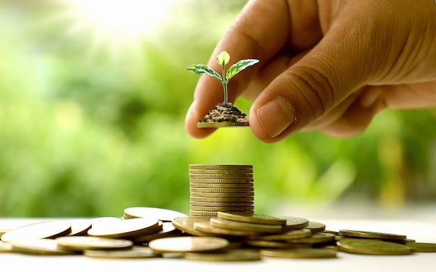 金貨と自然の緑の背景に手で木を植えます。お金を節約するアイデア。
