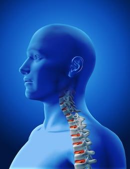 人間の背骨のデザイン