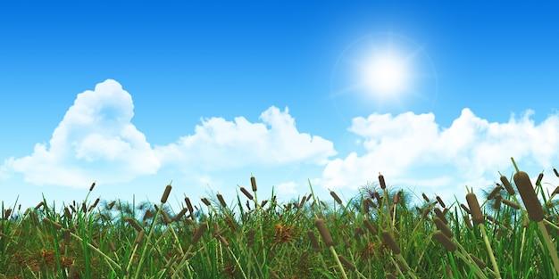 Камыши с облаками и солнцем