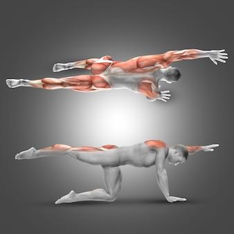 男は、脚や背中の筋肉をしています