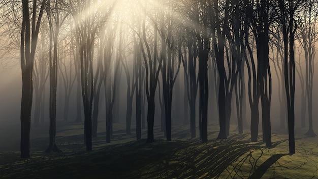 霧の日の木々