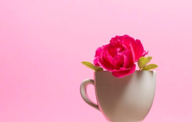 ピンクの背景のカップに赤いバラ