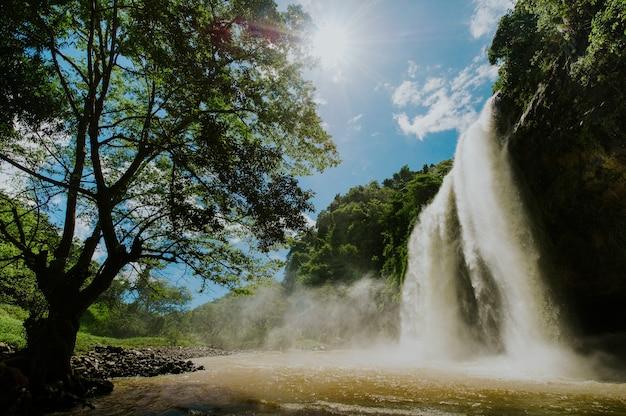 上から見た風光明媚な滝