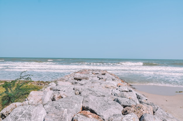 海の眺めのビーチの岩