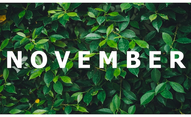 カレンダー月のリスト自然の緑の葉の背景に設計されています