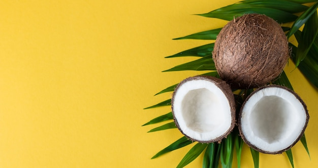 黄色の背景に緑の葉とココナッツ。