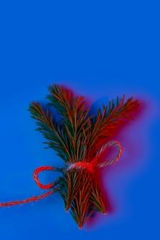 Веточки ели перевязаны шпагатом в неоновом свете на синем
