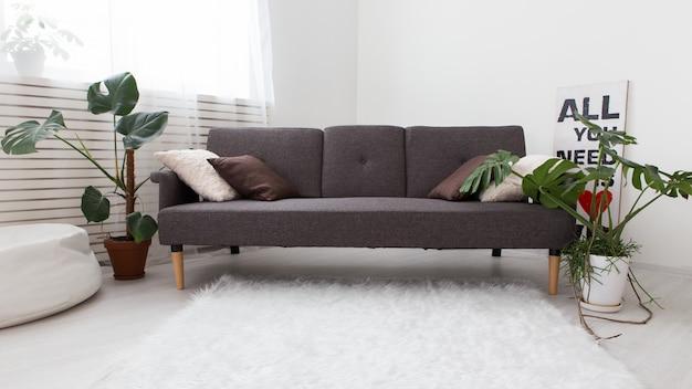 生きている植物があるモダンなワンルームマンション。インテリアはグレー。リビングルームのソファー。