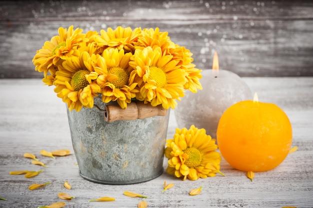 Крупным планом золотисто-желтой хризантемы