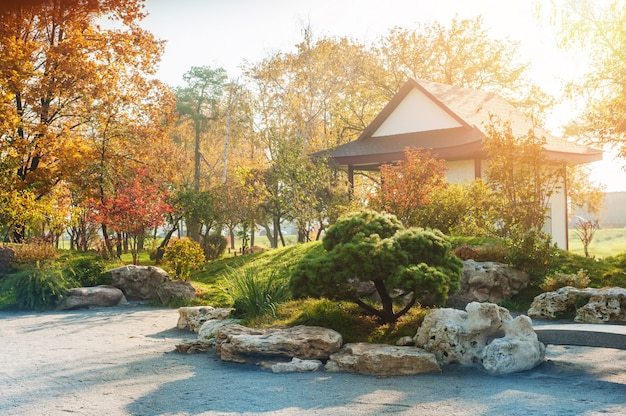 赤黄色のもみじの木と日本のスタイルの公園