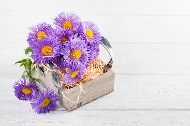 Фиолетовые ромашки в коробке на белом столе