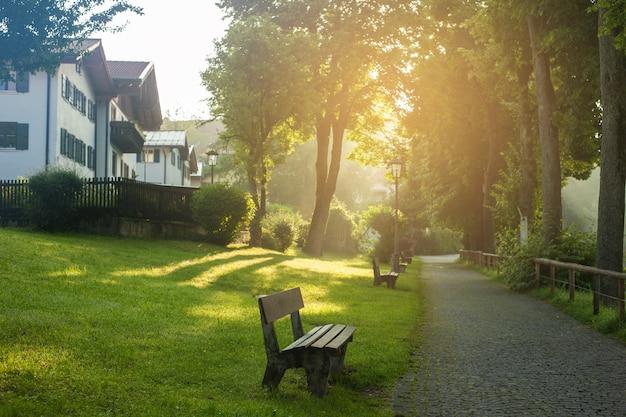 早朝の太陽の下で公園と霧