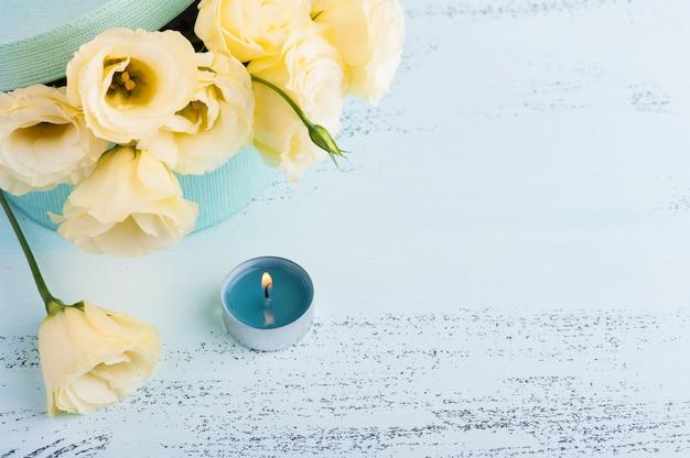 Желтая эустома цветы фон