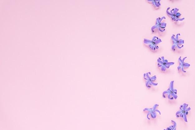 Цветочный красивый пастельный розовый фон. фиолетовые маленькие цветки гиацинта. плоская планировка, вид сверху, копия пространства