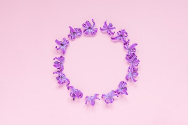 ピンクのグラデーションの背景にパステルパープルヒヤシンスの花のラウンドフレーム。フローラルリース。