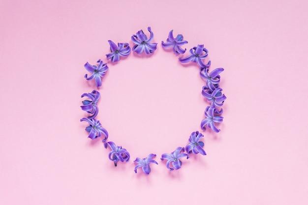 グラデーションピンクの背景にパステルパープルヒヤシンスの花のラウンドフレーム。フローラルリース