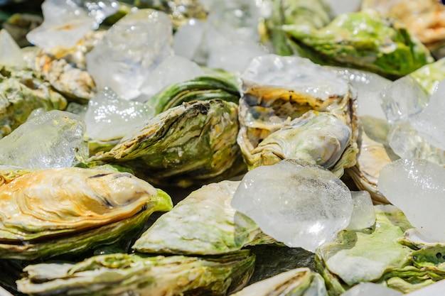 Много свежих закрытых устриц на льду. закройте рынок морепродуктов.