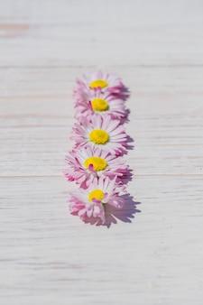 Розовые цветы ромашки на фоне деревянный стол с копией пространства