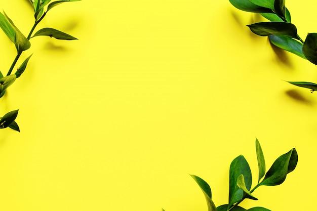 新鮮な緑のラスカスと枝が黄色の背景に残します。枝と葉を持つフレーム。フラット横たわって、俯瞰