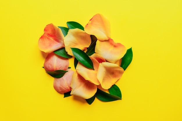 ラスカスの緑の葉と黄色の背景にバラの花びら。明るい春のトレンディなフラットレイアウト。見頃