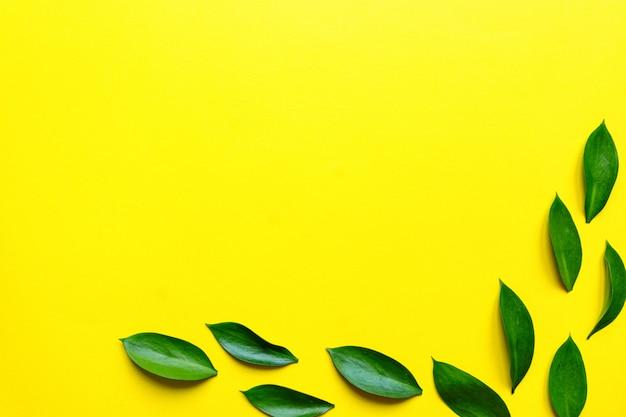 緑のルスクは、テキスト領域のあるトップビューフレームを残します。装飾的な緑の境界線。黄色の背景に新鮮な葉。エキゾチックな葉、熱帯、熱帯雨林の植物の背景