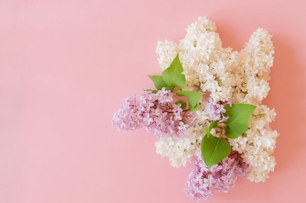 Фиолетовый и белый сиреневый букет на розовом фоне. цветочная композиция