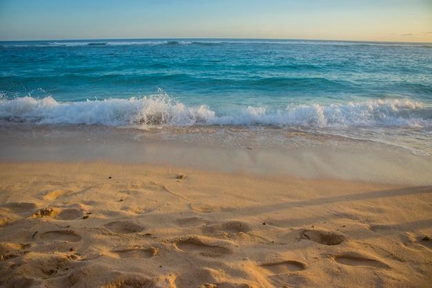 美しい夏のビーチの眺め