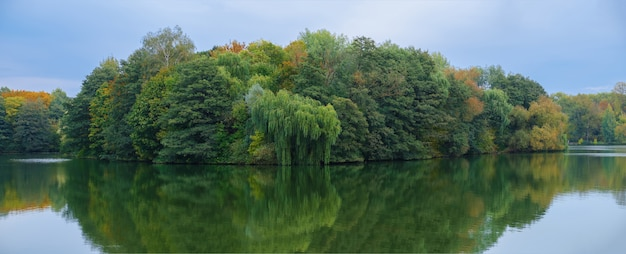 木が生い茂った島。野生の自然ボートから撮った写真。